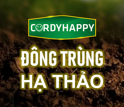 dong trung ha thao